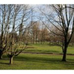 1200pxmlkpark_north_in_amsterdam_2_10425300