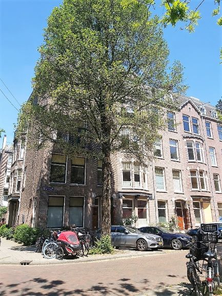 RENTED OUT – Amsterdam-Old South, Frans van Mierisstraat